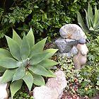 Giant Green Star Plant by Sandra Gray