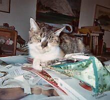 My beloved Sammy Samantha  by kevin seraphin
