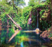 Waterhole - Krause Springs by Chuck Underwood