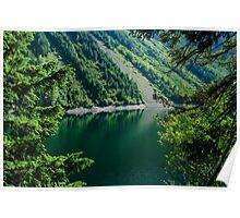 Thunder Lake Through the Trees Poster