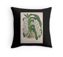 Iconagraphy of Orchids Iconographie des Orchidées Jean Jules Linden V4 1888 0034 Throw Pillow