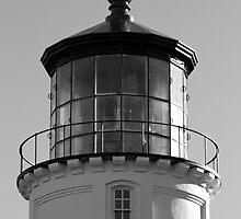 Lighthouse in Black and White by Laddie Halupa