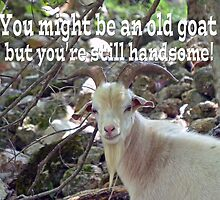 Old Goat Card by Susan S. Kline
