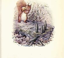 The Tale of Squirrel Nutkin Beatrix Potter 1903 0045 Bowling with Crab Apples and Green Fir Cones by wetdryvac