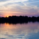 Zambezi River Sunset by Gethin