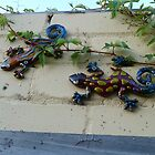Lazy Lizards On The Garden Wall by joycee