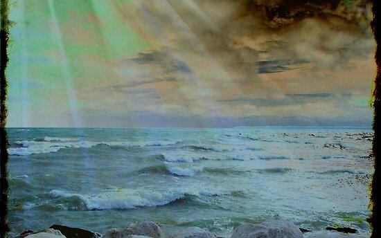 Storm Rage ©  by Dawn Becker