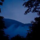 Light in the darkness by mario farinato