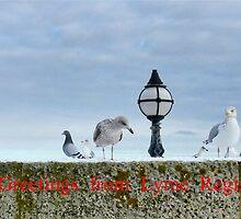greetings from Lyme Regis by lynn carter