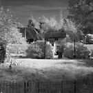 My garden - in infrared by Christopher Cullen