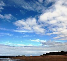 Bass Rock, from Yellow Craigs beach, East Lothian by Christopher Cullen