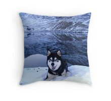 Shadow on the Snow Throw Pillow