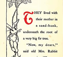 The Tale of Peter Rabbitt Beatrix Potter 1916 0010 They Lived Under a Sand Bank by wetdryvac