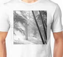 Sunlight on Falling Snow and Trees Unisex T-Shirt