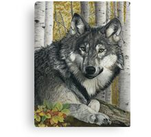 Alpha Male Canvas Print