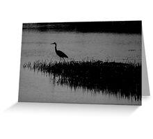hunting heron Greeting Card