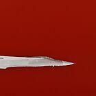 White Hot Red by Jen Waltmon
