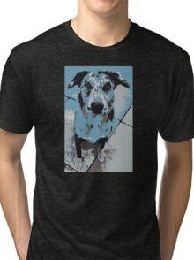 Catahoula Catawhat Leopard Dog Tri-blend T-Shirt