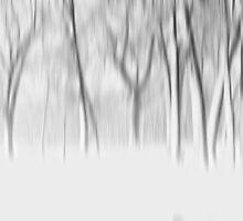 Winter's impression by Angela King-Jones