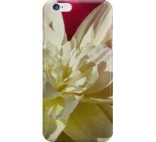Pink & White Silks #3 iPhone Case/Skin