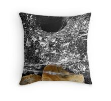 Drops Tangled Within A Web Throw Pillow