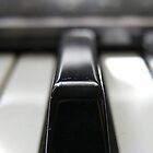 Piano Key by Lucy Hale