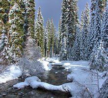 Winter Stream by Joe Powell