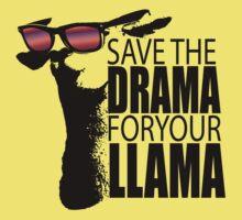 DramaLlama Kids Clothes