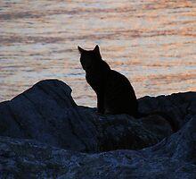 Waiting her love to return from fishing! by rasim1