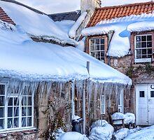 Cottage Living by Lynne Morris