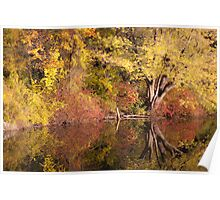 Autumn sunset at the lake. Poster