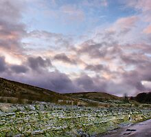 Lonely Road To Swaledale by Sandra Cockayne