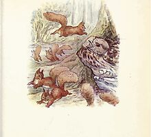 The Tale of Squirrel Nutkin Beatrix Potter 1903 0053 Flutterment Scufflement Squeak by wetdryvac