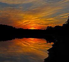 Fiery Night II by Paul Gitto