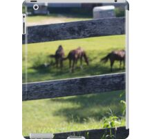 RURAL STABLES iPad Case/Skin