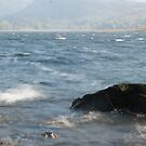 windy water 2 by mickeyb