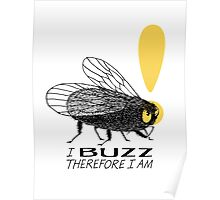 Thinker fly, I buzz therefore I am Poster