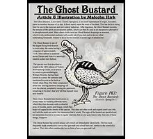The Ghost Bustard Photographic Print