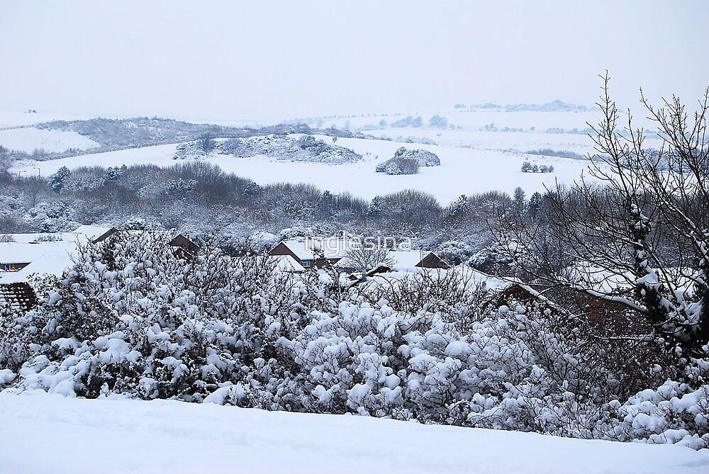 Winter Wonderland by inglesina