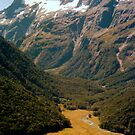 Routeburn track scenery by apple88
