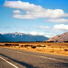 Arthur's pass by apple88