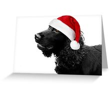Merry Christmas Cocker  Greeting Card