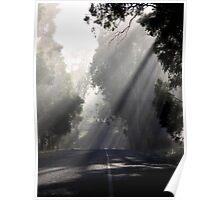 ~ Sun Rays ~ Poster