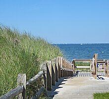 Boardwalk to the ocean beach by Linda Crockett