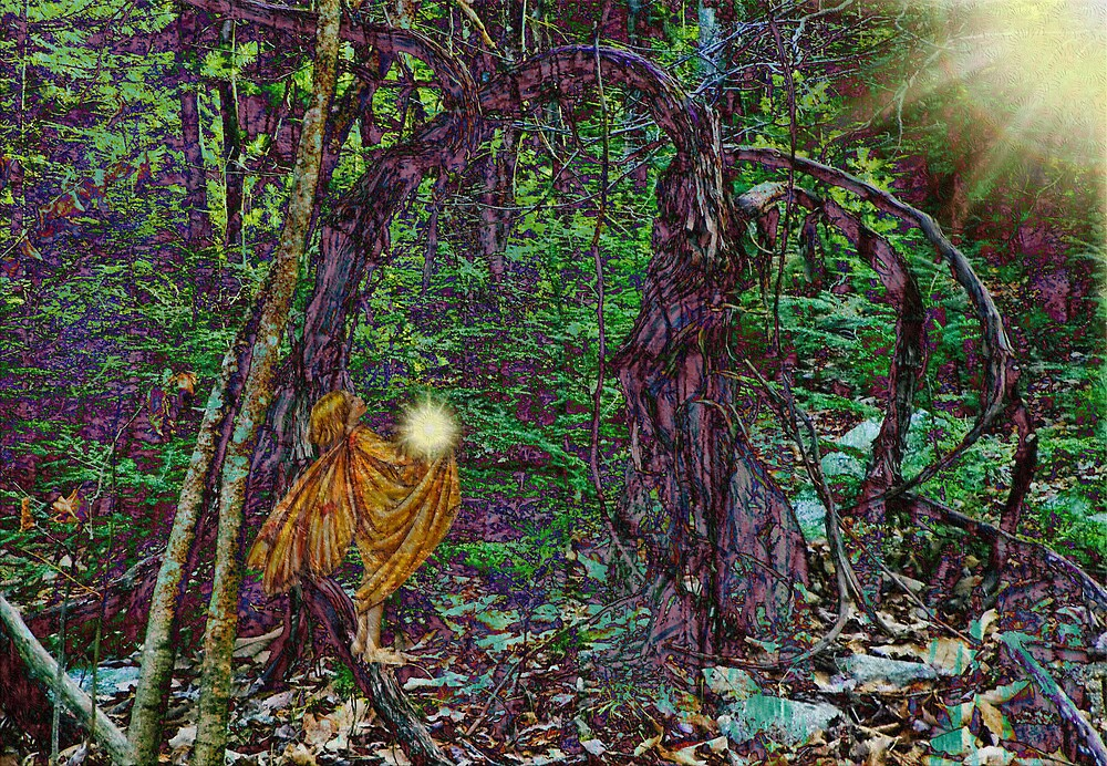 Offerings in the Forest by Pamela Phelps