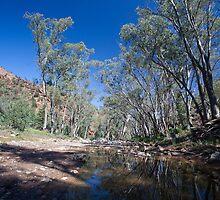 Creekbed - Flinders Ranges by Michael Selge