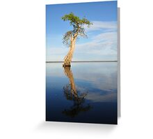 Solitary Cypress Greeting Card