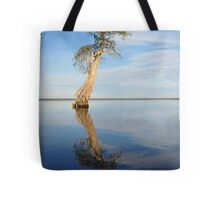 Solitary Cypress Tote Bag