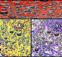 Droplet Variations by Susan Werby