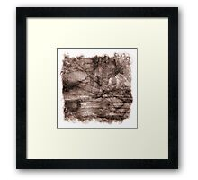 The Atlas of Dreams - Plate 13 Framed Print